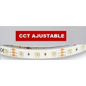 Tiras LED color ajustable