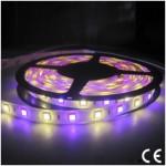 Tira LED 5 mts Flexible 72W 300 Led SMD 5050 IP20 RGB+W Blanco Frío Alta Luminosidad
